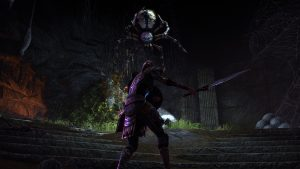 The-Elder-Scrolls-Online-Screenshot-Ungo