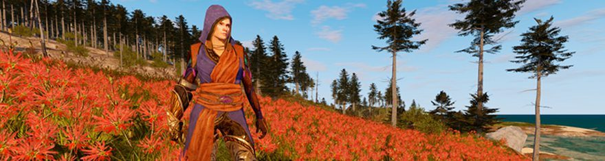 Camelot-Unchained-Beta-Release-Date-Delayed-By-Days-Or-Weeks