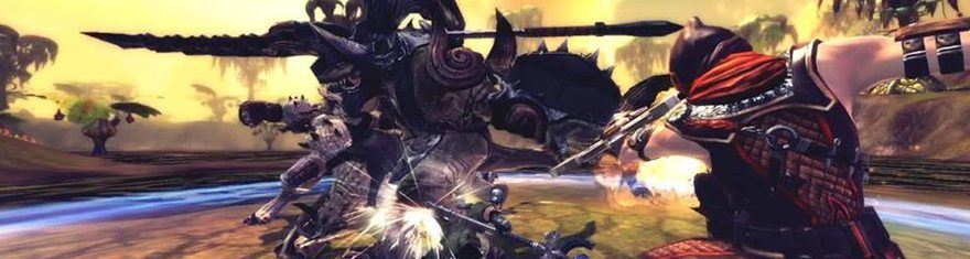 RaiderZ-Relaunch-Rerelease-Action-Combat-Changes-To-Dodge-And-Other-Target-Fight-Mechanics